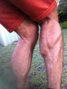 Calf-selfies.....harder than it looks.