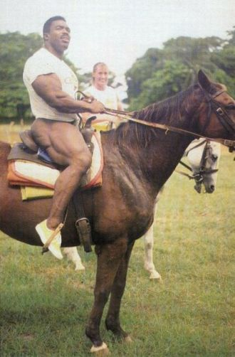 phil horse.jpg