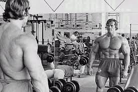 arnold visualise