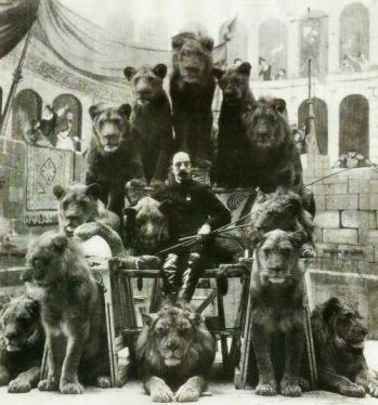 bears and lions