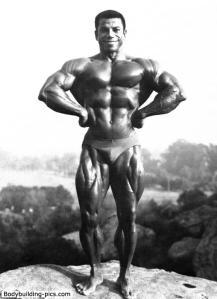 Dickerson 1981